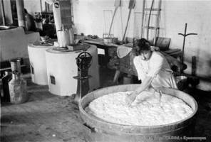 Making cheese at the farm dairy in the village of Laub, 1933.