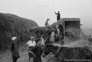 The workers of a Volga German collective farm during threshing of the new grain harvest,1933.