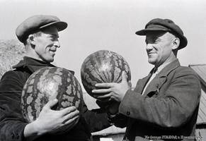 "Agronomist F.I. Tori and I.D. Weide, the chairman of the ""Voroshilov"" collective farm, seen with the watermelons intended for the district agricultural exhibition, 1938."
