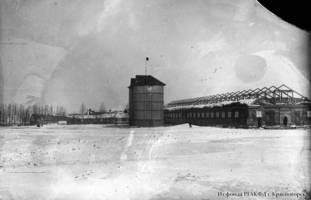 General view of the dairy farm at the Neu Hussenbach collective farm in Hussenbach, Krasny Kut Kanton, 1931.